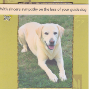 Guide Dogs Sympathy Cards